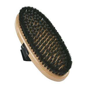 Oval Steel/Horshair Brush